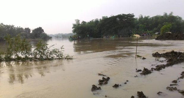 pantau-banjir-bojonegoro